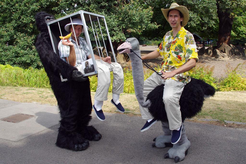 gorillaundstrauss